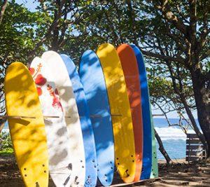 animation surf camping landes
